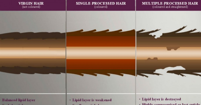 heat damaged hair
